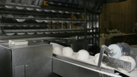 Panko Dough Rising