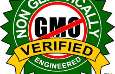 GMO Free Panko Manufacturer